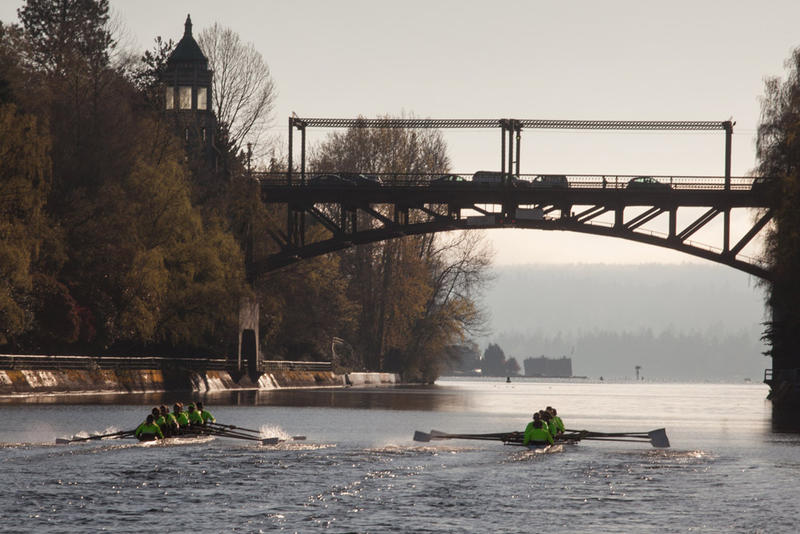 The UW Men's Rowing team practices along the Montlake Cut.
