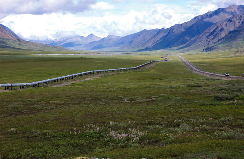 Trans-Alaska Pipeline, northern Brooks Range, Alaska. Rocks in the background produce oil on the North Slope.