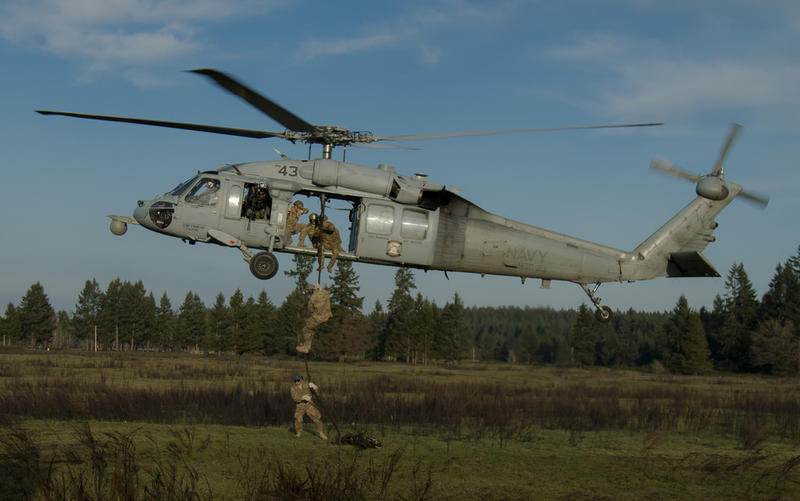 Soldiers perform fast rope insertion certifications at Joint Base Lewis-McChord in January 2015.