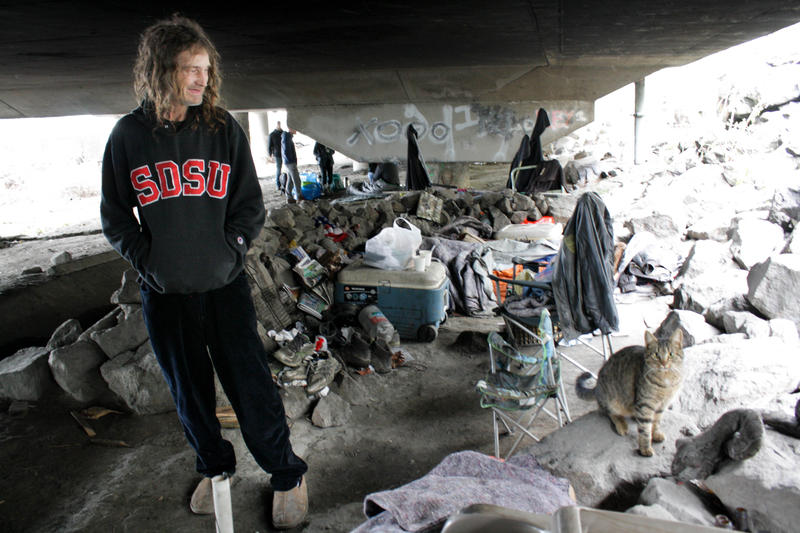 Many cats and dogs live as pets to residents of the Jungle, Seattle's notorious homeless encampment.
