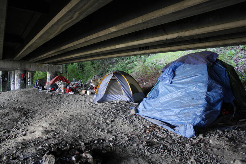 Tents lined up in the Jungle, which extends north and south under Seattle's Interstate 5 corridor.