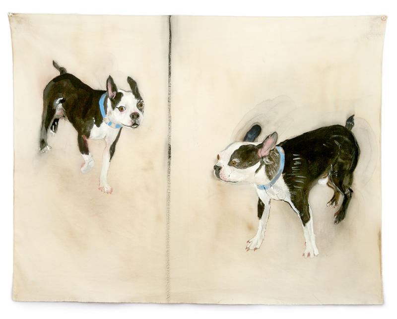 BOSTON TERRIER, 2014 Gouache on cotton 25 x 32 inches