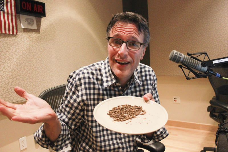 KUOW host Bill Radke challenges everyone to make bug protein a part of their regular diet. Because, why not?