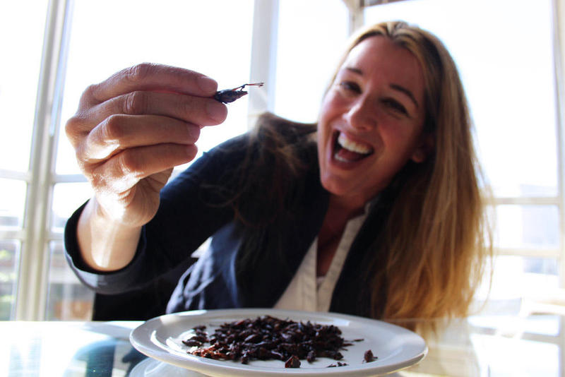 Mary Elder was a guest on our show, talking about 50 fears she wanted to conquer. One of them was eating a bug. So our web producer Kara McDermott was like, let me help you with that, and found some bugs that had been on the free counter.