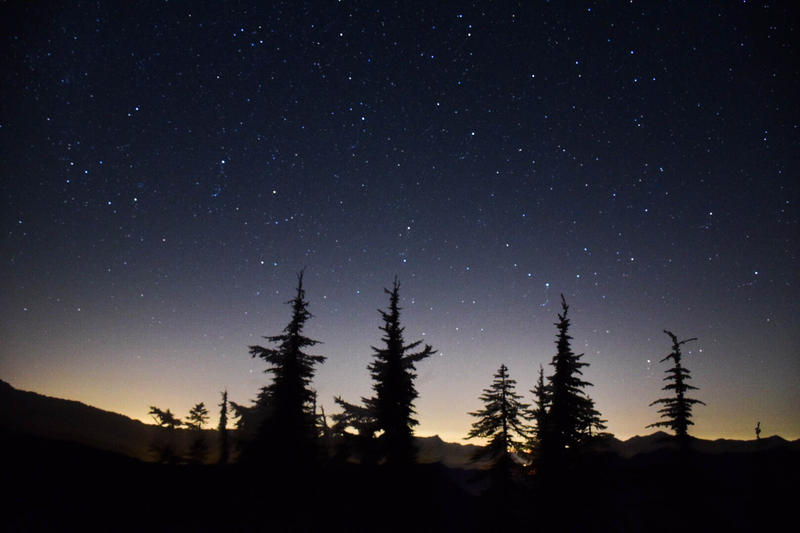 Perseid meteor shower at Mount Catherine off Snoqualmie Pass near Seattle.
