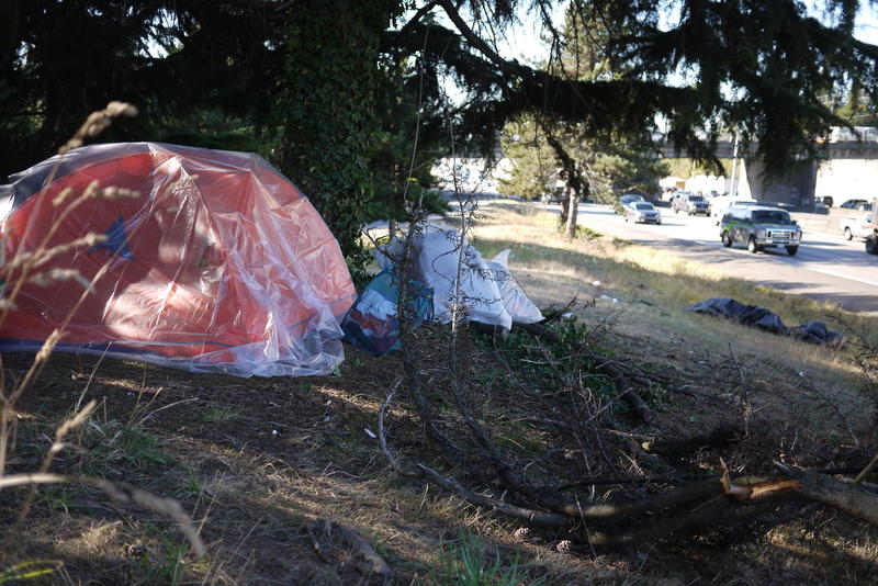 A large tree prevented this tent, next to the deceased's, from also being run over.