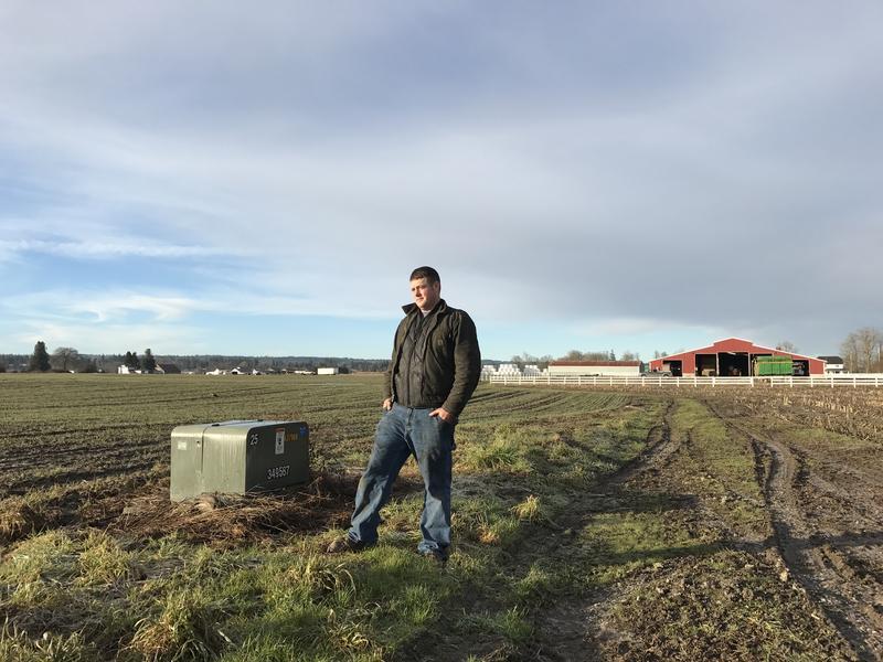 Third-generation Arlington farmer Andrew Albert. Albert planted winter wheat around a power box that was meant to serve the housing development.
