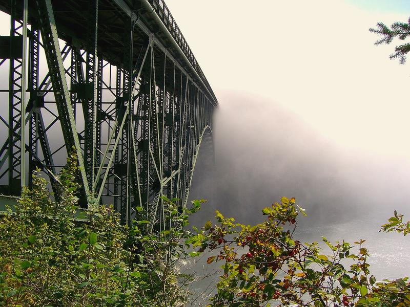 The bridge at Deception Pass, between Whidbey Island and Fidalgo Islands. It got its name from Captain George Vancouver, who felt deceived by the width of the waterway.