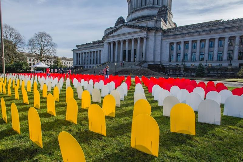 A display in Olympia honors deaths by suicide in Washington. The red markers are suicides by gun.