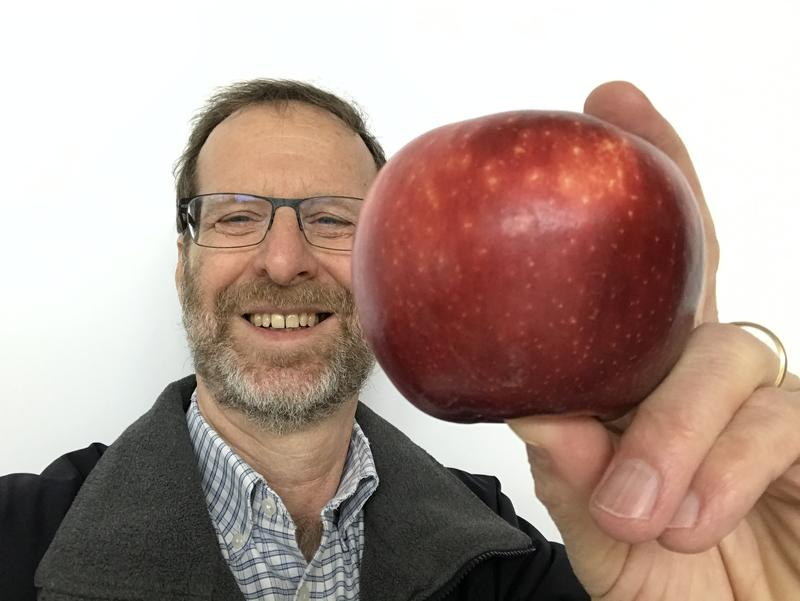 NPR food reporter Dan Charles poses with a Cosmic Crisp apple