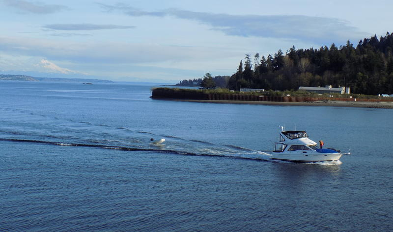 A pleasure boat passes the former creosote plant, where groundwater and soil contain toxic creosote, at the entrance to Bainbridge Island's Eagle Harbor.