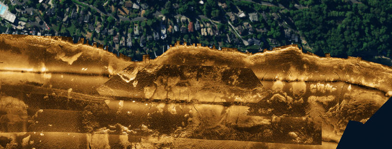 This image is a close up of the standing timber on the south end of Mercer Island.  The image is generated using a side scan sonar towed behind a boat about 20 feet off the bottom. The trees are visible mostly from the shadows they cast.