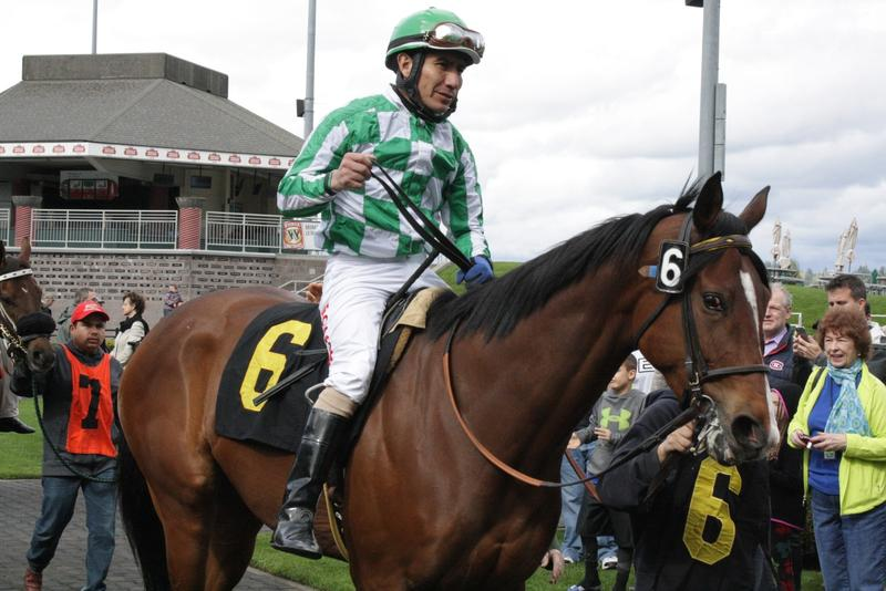Jockey Javier Matthias on McDove. McDove and Distinguishable are the Green Bay Packers of horses, being owned collectively by owners of the Emerald Racing Club.
