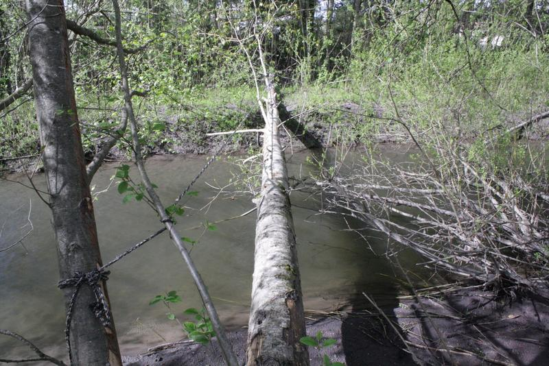Cross this log bridge to reach an island in Auburn where some homeless people live.