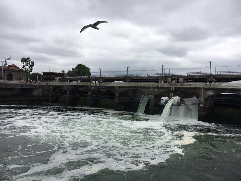 The Ballard Locks link Puget Sound with Lake Washington and Lake Union.