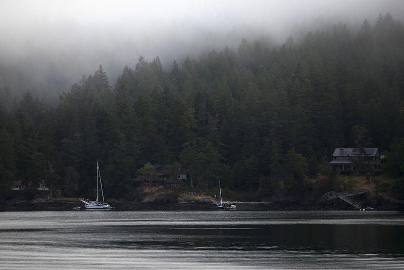 Sailboats are moored on Sunday, July 30, 2017, on Orcas Island. KUOW Photo/Megan Farmer