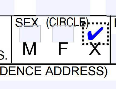 The non-binary option on Oregon's driver license application.