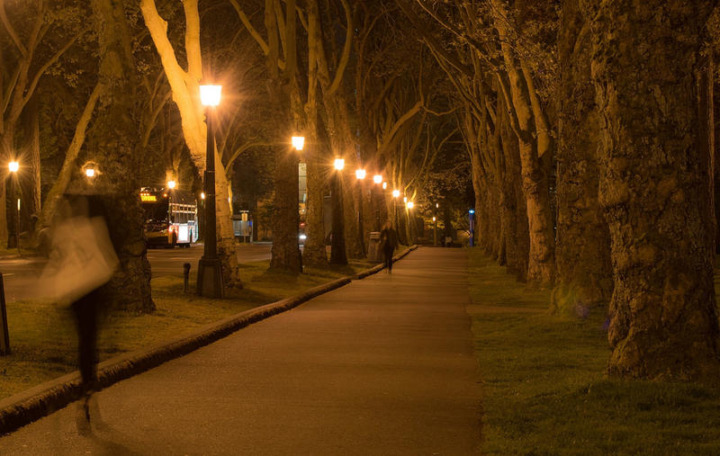 University of Washington campus at night.