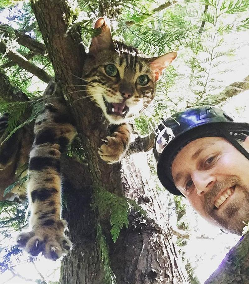 Treetop cat rescue selfie.