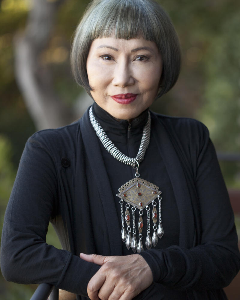 an analysis of amy tans writing style Assignment: narrative style analysis fish cheeks analysis  amy tan's mother conveyed to her that to be mortified because of what and who you are,.