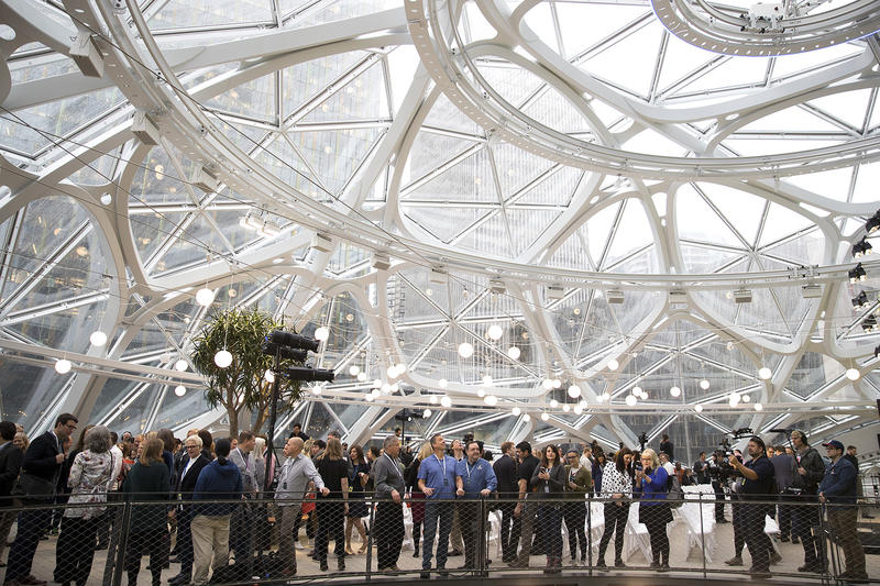 A large crowd is shown on Monday, January 29, 2018, during the grand opening of The Spheres, in Seattle.