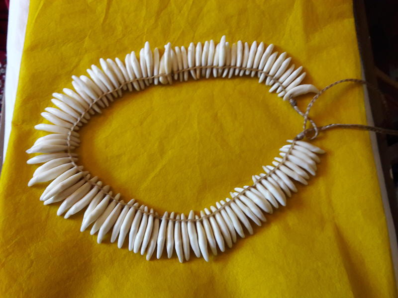 This adornment is part of Iwalani Christian's collection, made of dog teeth.