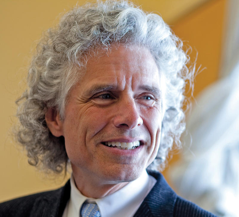Author and cognitive psychologist Steven Pinker