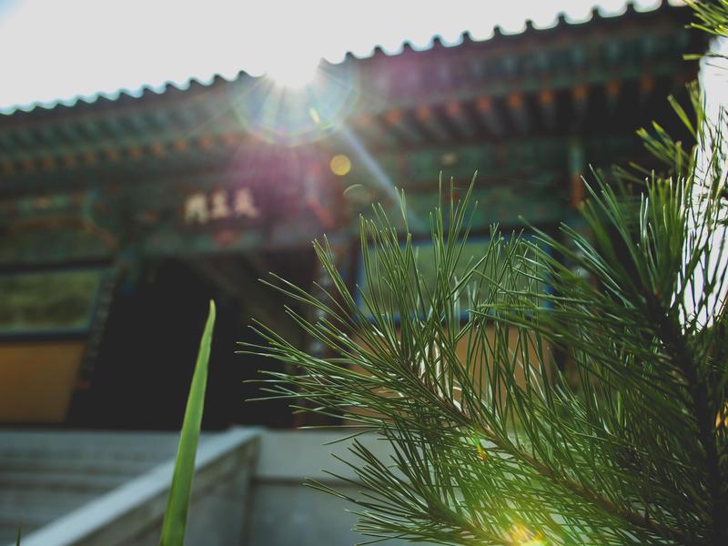 Gate of Liberation