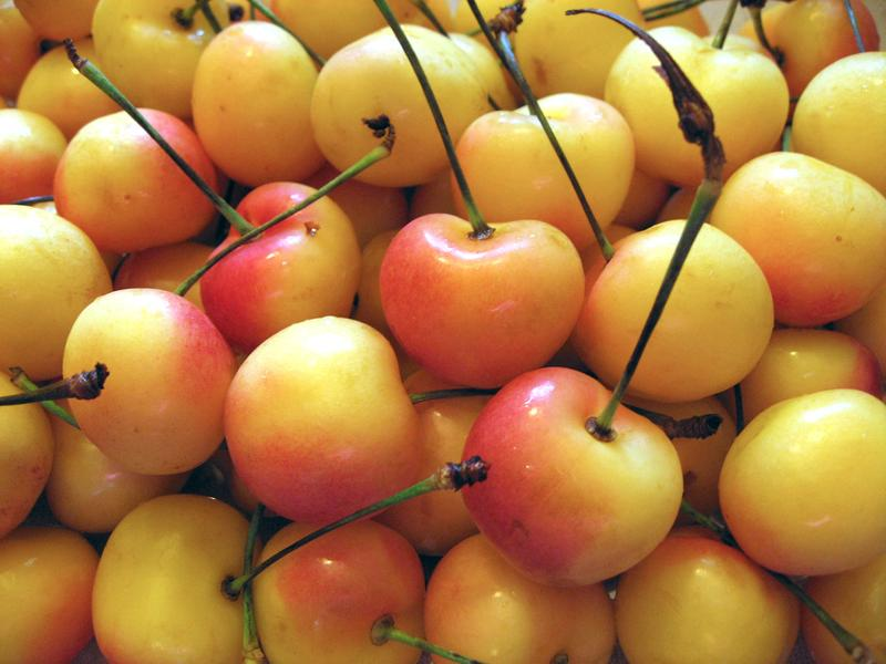 Washington is the top cherry producing state in the country.