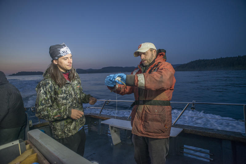 Joshua Monette (L) and Jonathan Scordino (R) bait a cibud hook at dawn off the Olympic Peninsula in 2015.