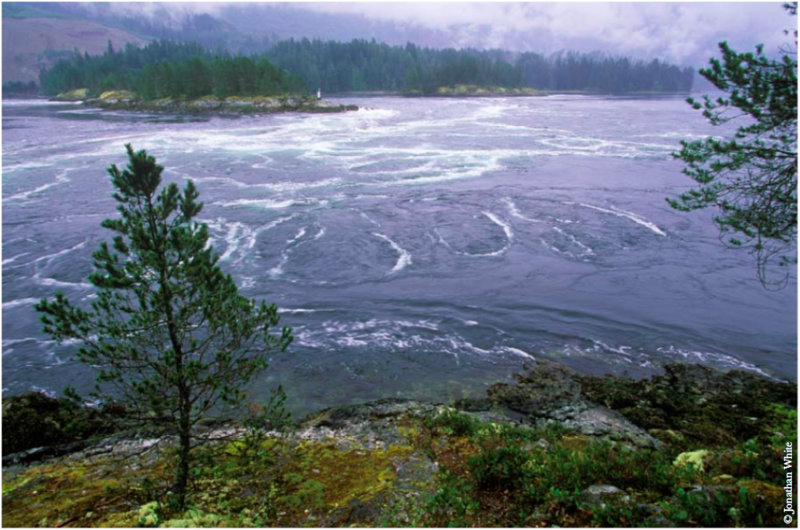 Skookumchuck Narrows Flood Tide, British Columbia, Canada