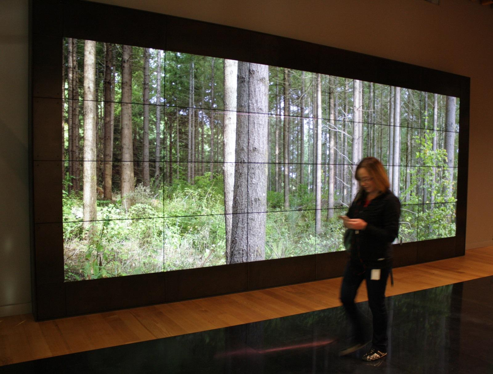 Weyerhaeuser Headquarters Interior