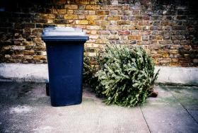 The City of Austin is offering curbside pick up for Christmas trees.