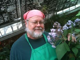 Cotton candy for butterflies. Botanist Mick Vann displays a flower from the tropical rainforest of Guatemala. The flowers do smell like cotton candy.