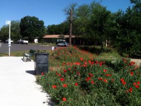 "The ""roundabout"" the Highland Neighborhood recently transformed through a community partnership with the City of Austin."
