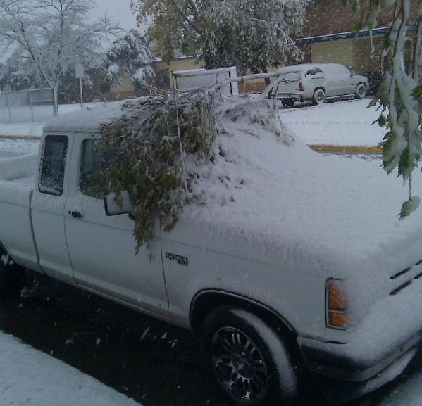 Snow fell overnight in parts of the Texas Panhandle.