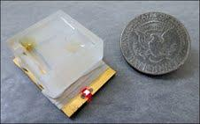The biosensor, developed by a UT graduate student, is the size of a half-dollar.