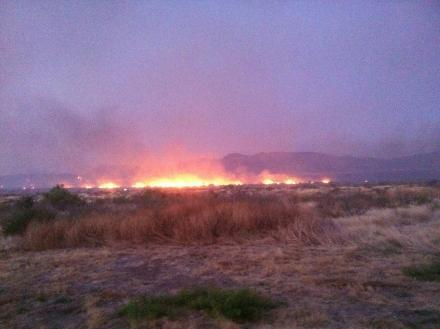 The Texas Forest Service says it's getting a break from the wildfires that have been burning across the state.