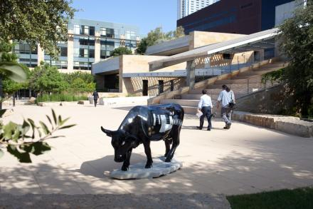Former KVUE anchor Olga Campos will begin her work with Austin philanthropist Milton Verret by managing efforts with the Austin Cow Parade, which raises funds for children and families facing medical challenges.