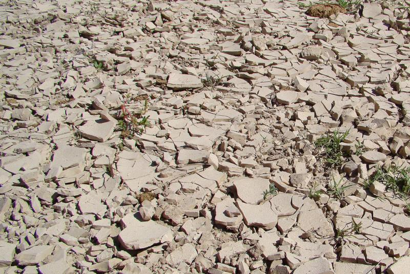 The cracked ground at Boquillas Canyon Trail at Big Bend National Park in October. Ninety percent of Texas is still in drought, according to the US Drought Monitor.