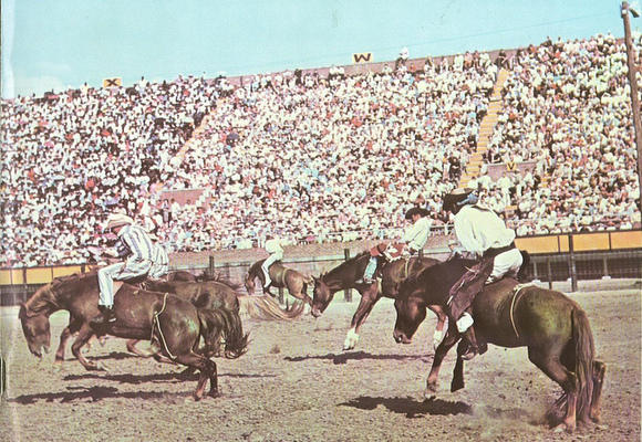 Detail from a 1964 Texas Prison Rodeo program.