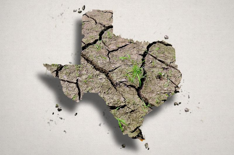 A report from Texas Comptroller Susan Combs says economic effects of the drought could reach into billions of dollars.