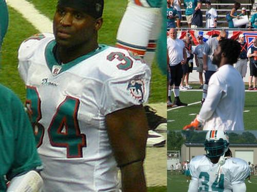 Williams, as seen during his time playing for the Miami Dolphins