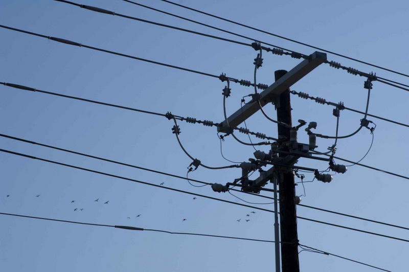 The City Council may relinquish direct control of the utility.
