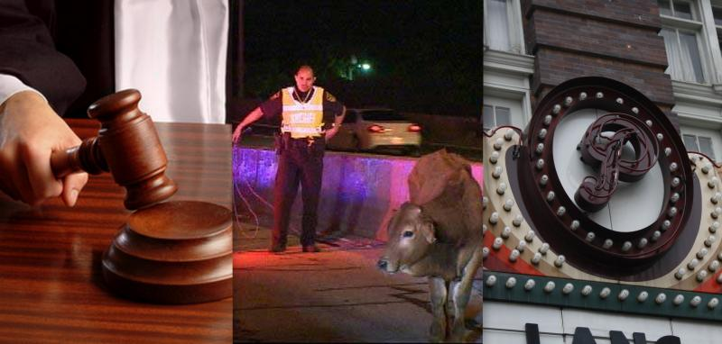 Texans strongly support death penalty; an accident sets cattle loose on I-35; and the Paramount's summer film series begins.