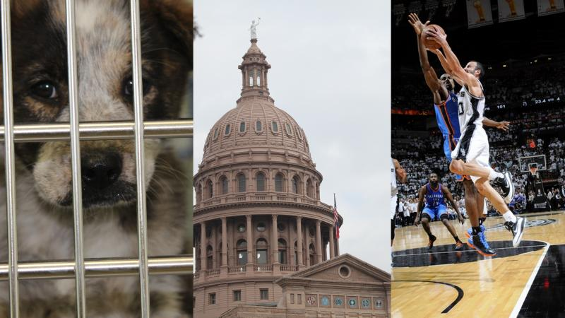 Despite crowding, the Austin Animal Shelter met its no-kill benchmarks in May; The Texas House Ways & Means Committee will take a closer look at a tax today; The Spurs are down 3-2 in the NBA Western Conference Finals.