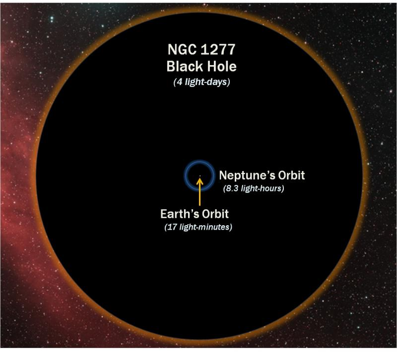 This diagram shows how the diamater of the 17-billion-solar-mass black hole in the heart of galaxy NGC 1277 compares with the orbit of Neptune around the Sun. The black hole is eleven times wider than Neptune's orbit.