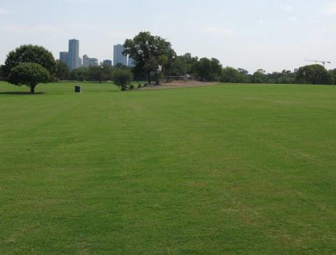 Zilker's Great Lawn doesn't look this green right now but the public can enjoy part of it for the next few weeks.