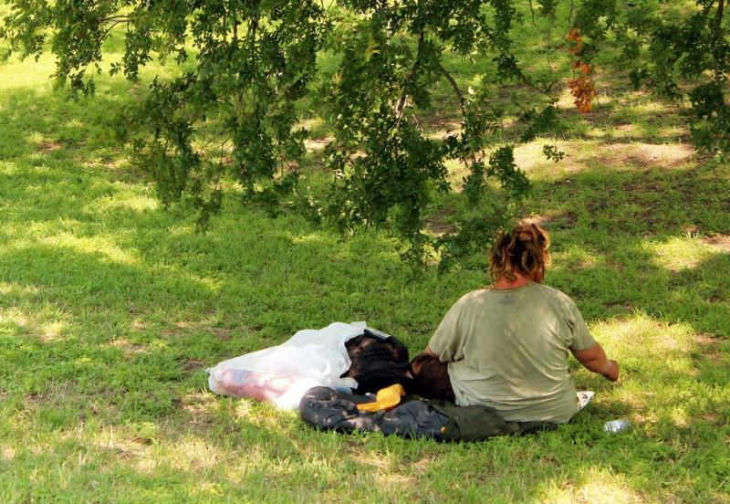 A homeless individual in Wooldrige Park last year. Teams of volunteers canvassed Travis County to count the homeless this weekend.
