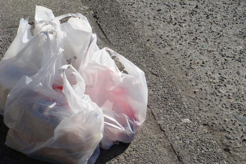 Businesses cannot provide single-use plastic bags starting Friday.